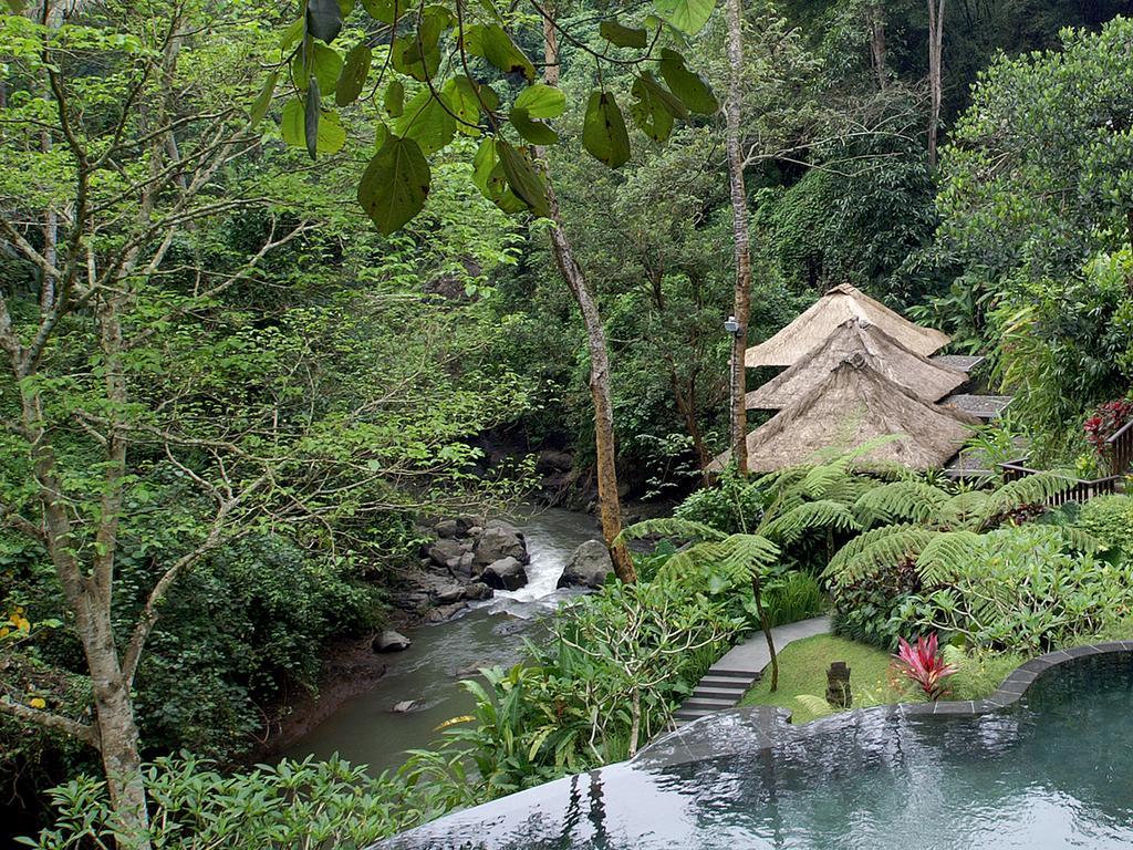 Maya Ubud