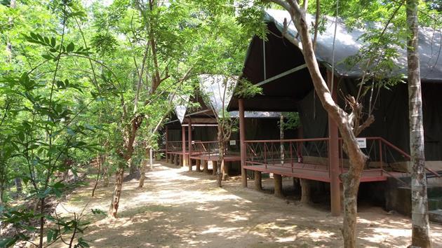 Hornbill Camp