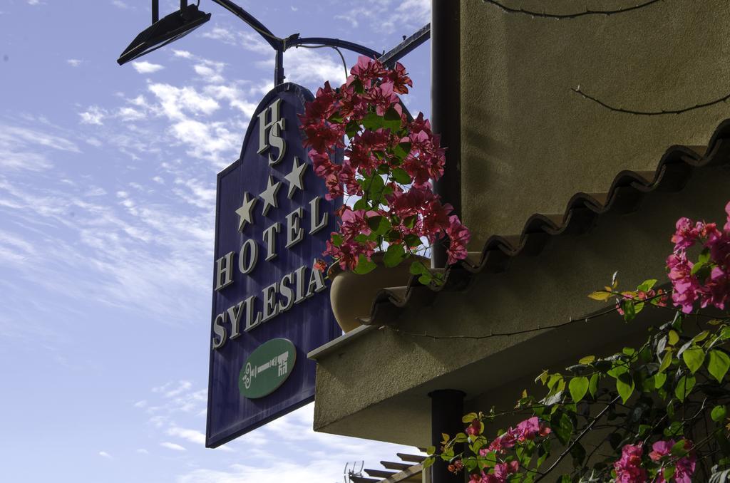 Sylesia